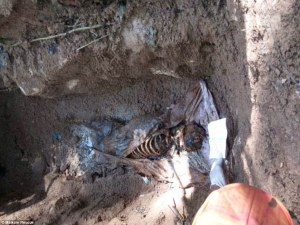 Chilling_The_gruesome_grave_site_discovered_near_the_Malaysian_b-a-